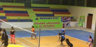 castilla vóley torneo regional