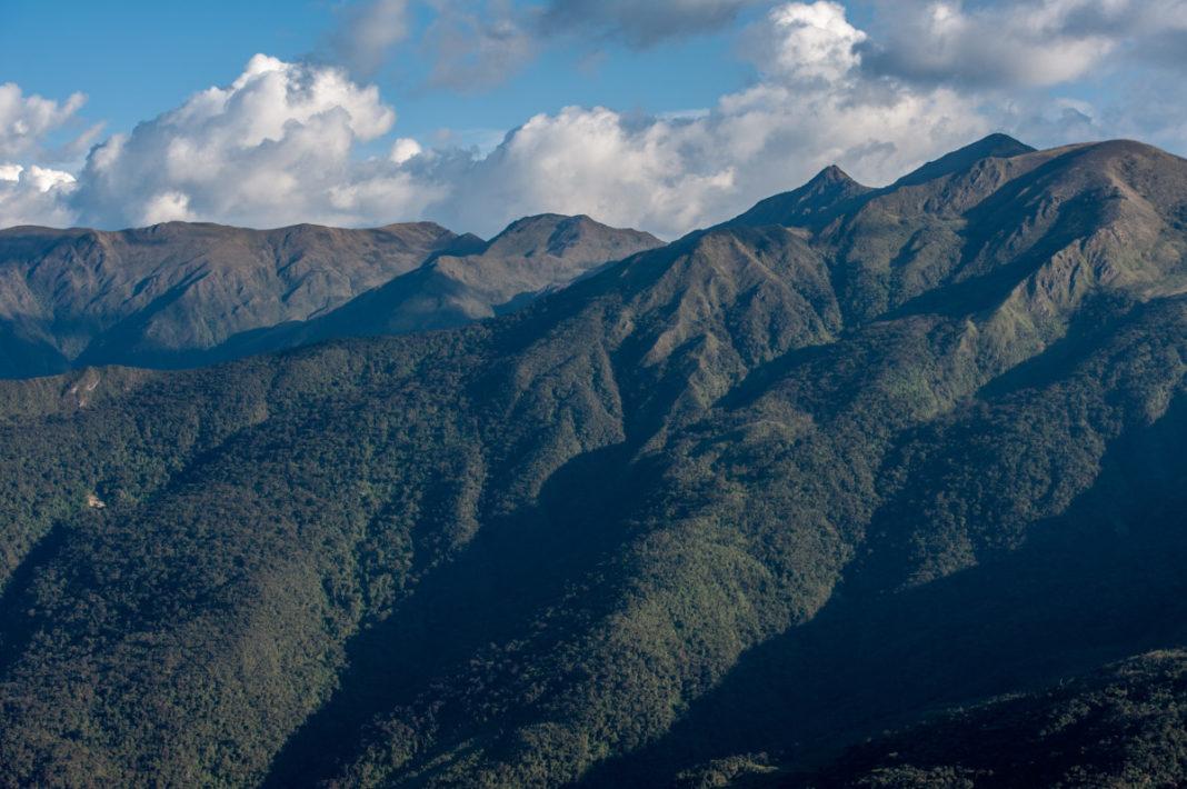 ACP Bosques montanos y páramos Chicuate Chinguelas. Foto: André Baertschi