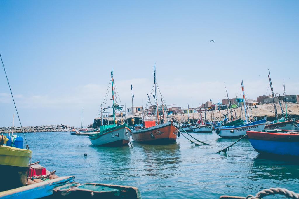 La pesca es la principal actividad económica de los pobladores de La Islilla Foto Walac/Yanina Palomino
