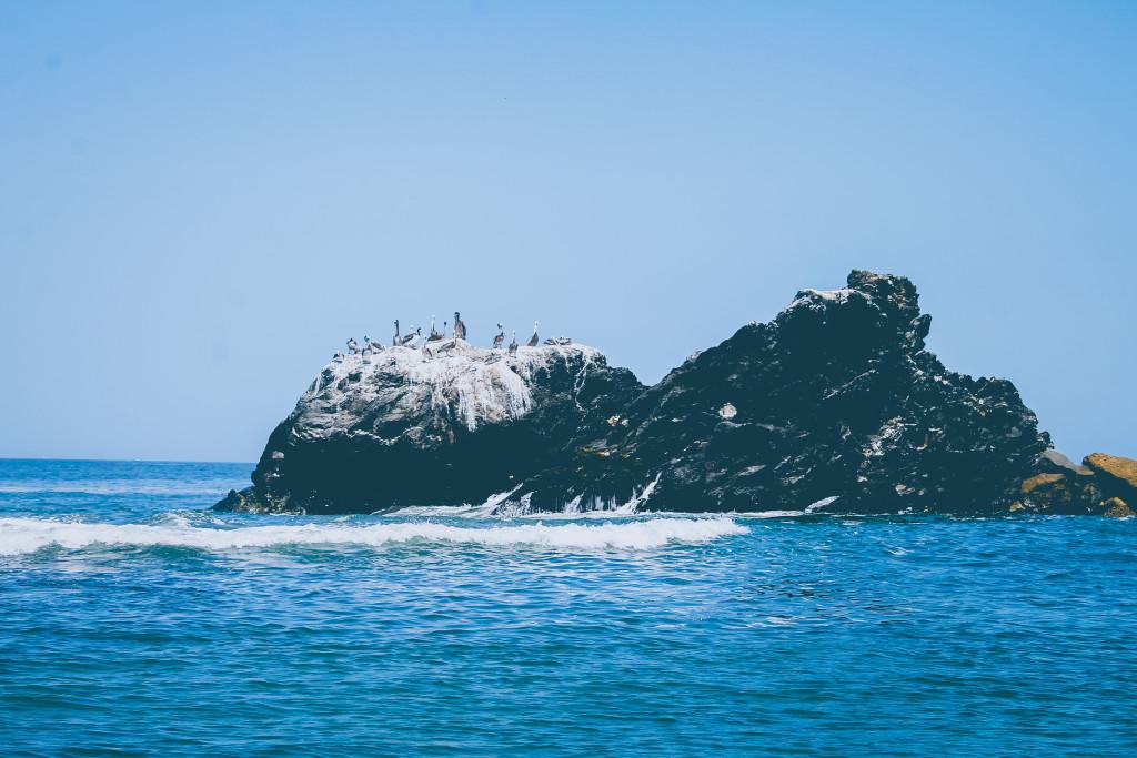 Isla Foca, ubicada a 600 metros de la caleta La Islilla. Foto: Walac/Isabel Palomino