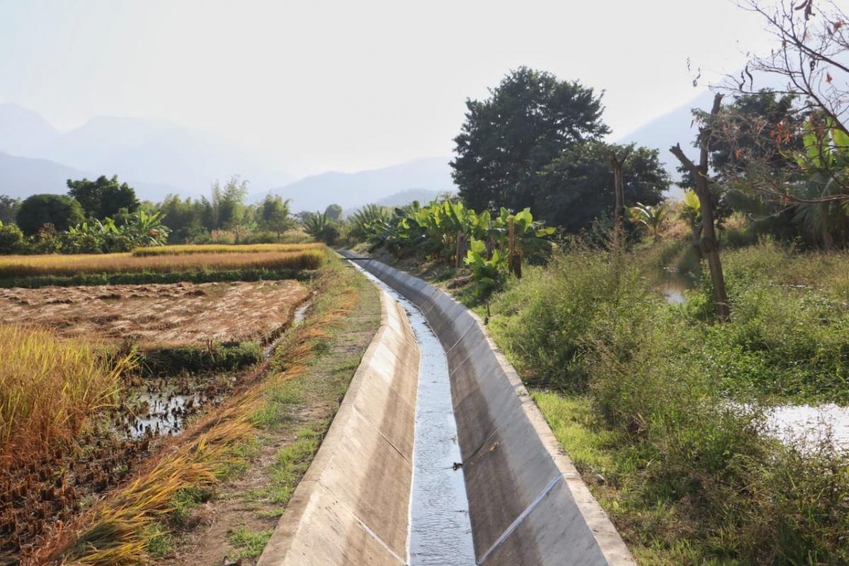 canal Paltal de Morropón