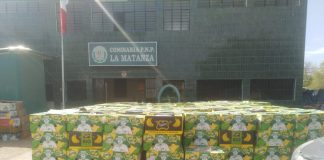 pitahaya y plátano orgánico