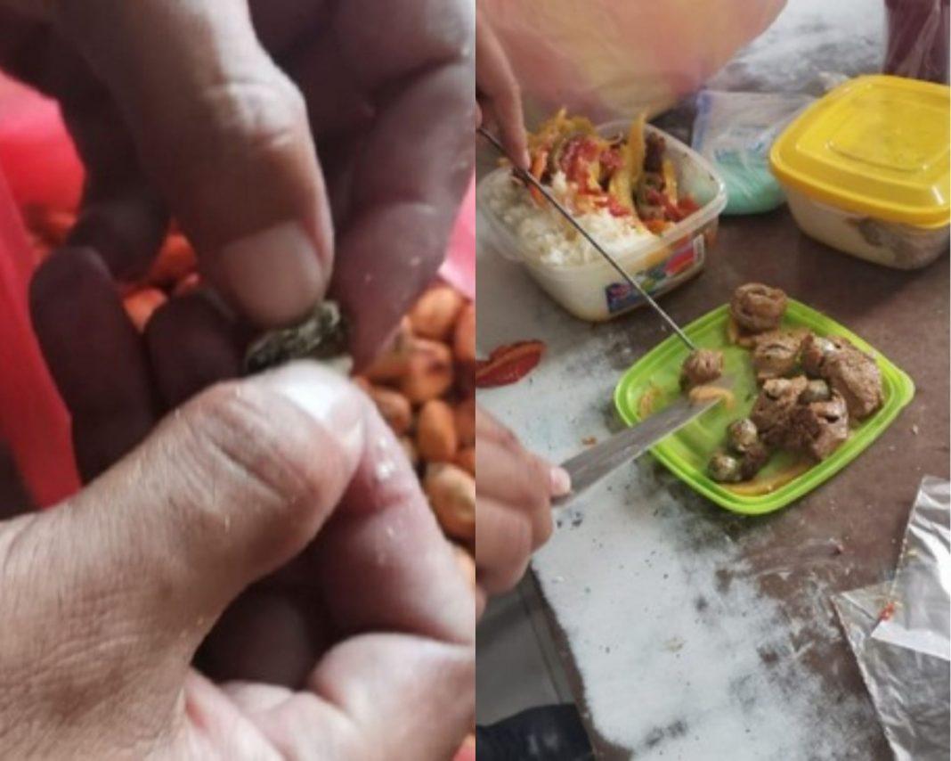 Incautan sustancias ilícitas en alimentos en penal de Piura