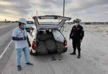 Fiscalía investiga a dos personas por transportar recurso hidrobiológico de procedencia ilegal