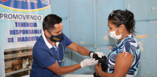 Aprueban licencia para la tenencia y circulación de mascotas en Piura
